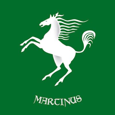 San-Martino copia